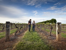 Coonawarra Wineries Walking Trail - Lismore Accommodation