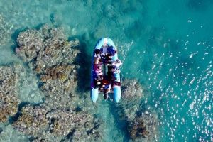 Glass-bottom boat tour with Whitehaven Beach - Lismore Accommodation