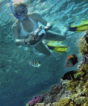 Calypso Reef Charters - Lismore Accommodation