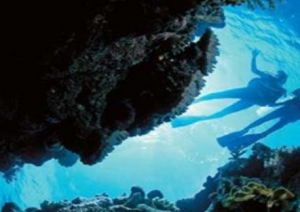 Deep Sea Divers Den - Lismore Accommodation