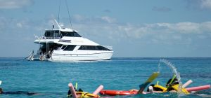 Seastar Cruises - Lismore Accommodation