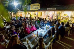 Miles Back to the Bush Festival - Lismore Accommodation